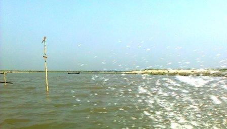 water_padma_ws.com